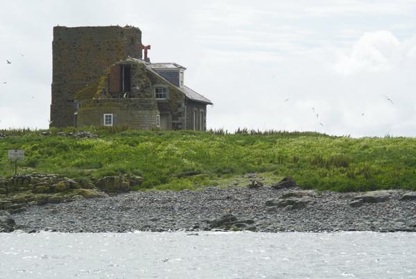 Isole Farne
