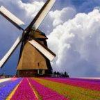 Viaggio in Olanda