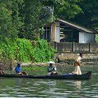India - Kerala - Navigando lungo le backwaters