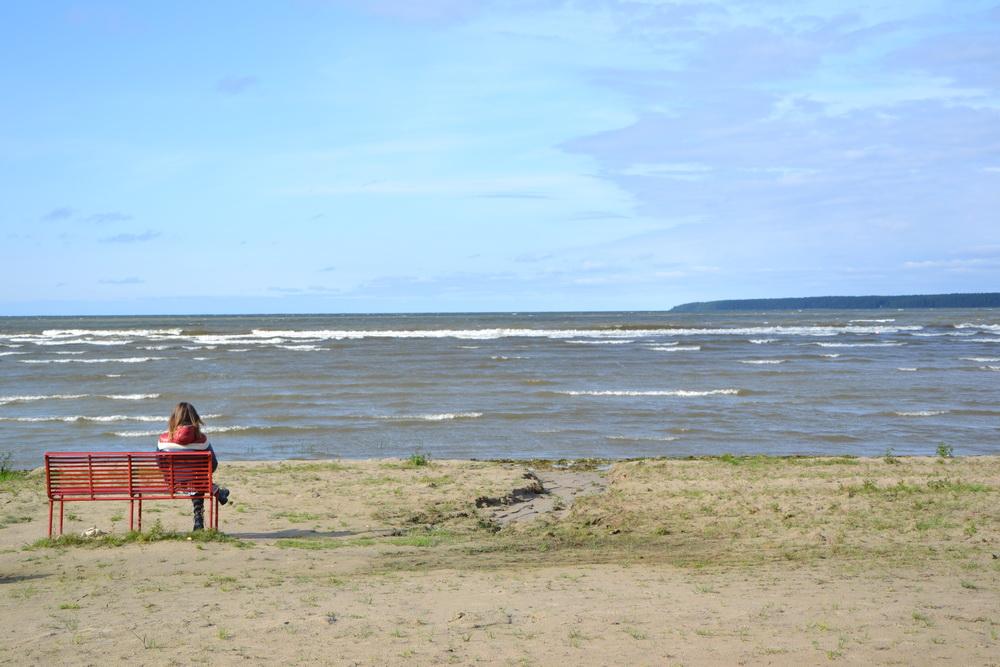 Estonia - Vista da Vosu sul Golfo di Finlandia