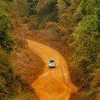 Viaggio in Gabon