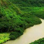 viaggi Amazzonia