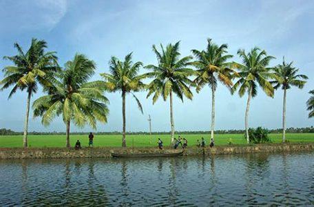 Viaggiare in Kerala lungo le backwathers