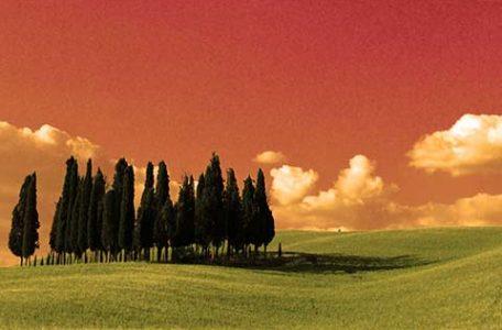 Viaggio Toscana