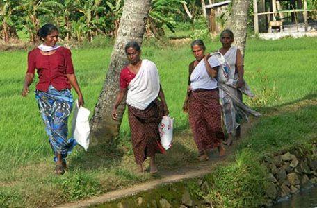 India - donne lungo i sentieri del Kerala