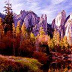 Stati Uniti - California - Yosemite National Park