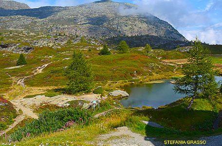 Simplon Svizzera, Foto di Stefania Grasso